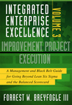 Lean Six Sigma - Improvement Project Execution